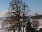 Storchenbaum Lützelsee CH