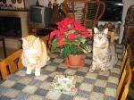 Frohe Weihnachten von Totò und Mizzi