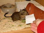 ein Brief? für mich?