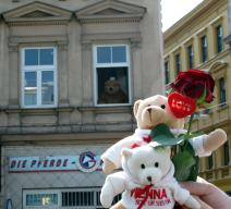 Der Wiener Gürtelbär (Fensterbär) bekommt Besuch