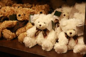 Bären warten drauf gekauft zu werden