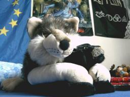 Wolfies Freunde No.2