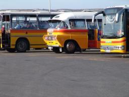Öffentliche Busse auf Malta